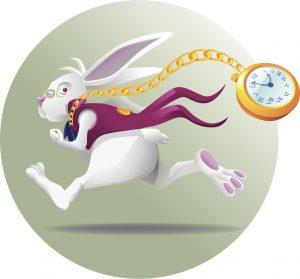 iStock-150930008-white-rabbit-300x279
